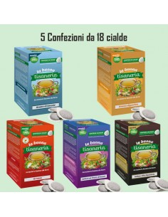 La Buona Tisaneria  5 confezioni di Tisane